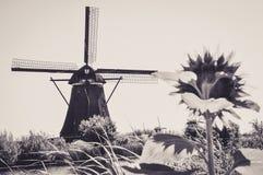 Μύλοι από τον ποταμό σε Kinderdijk στοκ εικόνα με δικαίωμα ελεύθερης χρήσης