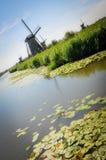 Μύλοι και κρίνοι νερού σε Kinderdijk στοκ φωτογραφία με δικαίωμα ελεύθερης χρήσης