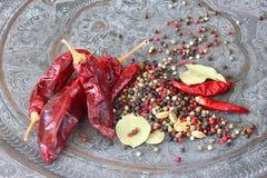 Μύλος καρυκευμάτων μετάλλων με το κόκκινο - καυτά πιπέρια και φύλλο κόλπων Στοκ Φωτογραφίες