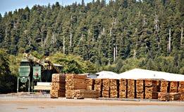 μύλος ξυλείας Στοκ φωτογραφία με δικαίωμα ελεύθερης χρήσης