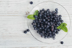 μύρτιλλο φρέσκο πρόγευμα υγιές Στοκ εικόνα με δικαίωμα ελεύθερης χρήσης
