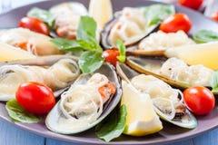 Μύδια στα φτερά, που ψήνονται με τη μοτσαρέλα, την ντομάτα και το πράσο σε μεγάλα στρογγυλά μεσογειακά τρόφιμα πιατελών στοκ εικόνες
