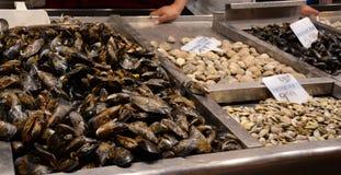 Μύδια στο μετρητή αγοράς Πολλά θαλασσινά κοχύλια στο bazaar για το εμπόριο Στοκ Φωτογραφίες