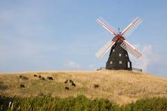 Μύλος και πρόβατα Στοκ Φωτογραφίες