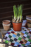 Νάρκισσοι άνοιξη και κεραμικά δοχεία στο πάπλωμα υφάσματος στον ξύλινο πίνακα Στοκ φωτογραφία με δικαίωμα ελεύθερης χρήσης
