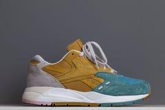 Νέα αθλητικά πάνινα παπούτσια, πάνινα παπούτσια ή εκπαιδευτές, σε ένα γκρίζο υπόβαθρο Στοκ εικόνες με δικαίωμα ελεύθερης χρήσης
