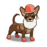 Νέα απεικόνιση χαρακτήρα κινουμένων σχεδίων χαμόγελου Santa Chihuahua έτους Στοκ Φωτογραφίες