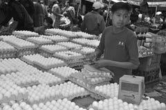 Νέα αυγά πωλήσεων αγοριών Στοκ Φωτογραφία
