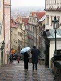 νέα βήματα ζευγών κάστρων Στοκ Εικόνες