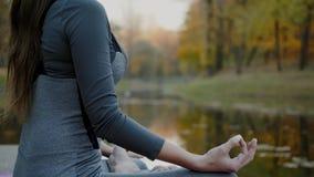 Νέα γιόγκα άσκησης γυναικών υπαίθρια Θηλυκό meditate υπαίθριο μπροστά από την όμορφη φύση φθινοπώρου απόθεμα βίντεο