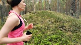 Νέα γυναίκα ικανότητας που τρέχει στο δασικό ίχνος δέντρων πεύκων απόθεμα βίντεο