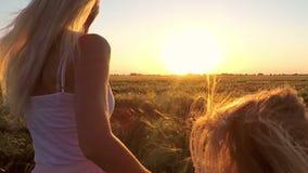 Νέα γυναίκα με το κορίτσι που οργανώνεται στον τομέα του σίτου στο ηλιοβασίλεμα φιλμ μικρού μήκους