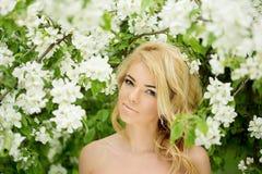 Νέα γυναίκα μόδας άνοιξη Καθιερώνον τη μόδα κορίτσι στα ανθίζοντας δέντρα ι Στοκ φωτογραφία με δικαίωμα ελεύθερης χρήσης