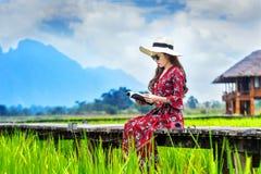 Νέα γυναίκα που διαβάζει ένα βιβλίο και που κάθεται στην ξύλινη πορεία με τον πράσινο τομέα ρυζιού σε Vang Vieng, Λάος στοκ εικόνες