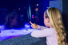 Νέα γυναίκα που δείχνει ένα anemone θάλασσας στη δεξαμενή Στοκ Φωτογραφίες