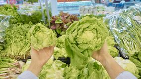 Νέα γυναίκα που επιλέγει τα πράσινα λαχανικά στο μανάβικο στοκ εικόνα με δικαίωμα ελεύθερης χρήσης