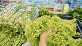 Νέα γυναίκα που επιλέγει τα πράσινα λαχανικά στο μανάβικο στοκ εικόνα