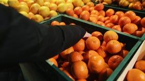 Νέα γυναίκα που επιλέγει φρέσκα tangerines σε μια υπεραγορά που επιλέγεται από το οργανικό αγρόκτημα Κινηματογράφηση σε πρώτο πλά απόθεμα βίντεο