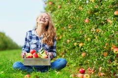 Νέα γυναίκα που επιλέγει τα ώριμα οργανικά μήλα Στοκ Εικόνες