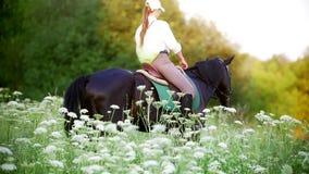 Νέα γυναίκα που καλπάζει στο άλογο μέσω του λιβαδιού στο ηλιοβασίλεμα απόθεμα βίντεο