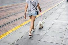Νέα γυναίκα που περπατά κάτω από την οδό πόλεων Στοκ Εικόνα