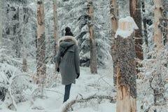 Νέα γυναίκα που περπατά μεταξύ του χειμώνα δέντρων στοκ φωτογραφίες