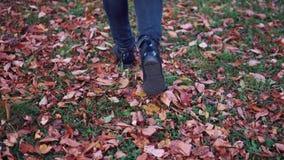 Νέα γυναίκα που περπατά στο πάρκο φθινοπώρου Θηλυκά πόδια κινηματογραφήσεων σε πρώτο πλάνο κορίτσι που περπατά στα πεσμένα φύλλα απόθεμα βίντεο