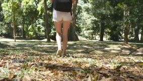 Νέα γυναίκα που πηγαίνει στην πράσινη ζούγκλα Το κορίτσι τουριστών με το σακίδιο πλάτης περπατά κατά μήκος των τροπικών δασικών θ Στοκ εικόνα με δικαίωμα ελεύθερης χρήσης