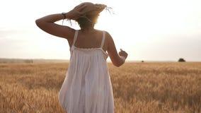 Νέα γυναίκα που τρέχει στον τομέα σίτου κρατώντας το καπέλο αχύρου της Ήλιος shunes στο σαφή ουρανό δέντρο πεδίων Σπάνια άποψη απόθεμα βίντεο