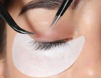 Νέα γυναίκα που υποβάλλεται eyelashes στη διαδικασία επεκτάσεων στοκ εικόνες