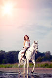 Νέα γυναίκα σε ένα άλογο Αναβάτης πλατών αλόγου, άλογο οδήγησης γυναικών στο β Στοκ Εικόνα