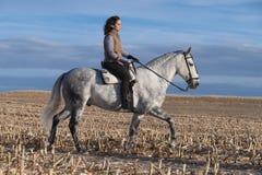 Νέα γυναίκα στην πλάτη αλόγου στοκ φωτογραφία με δικαίωμα ελεύθερης χρήσης