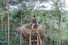 Νέα γυναίκα στην τεχνητή φωλιά στο τροπικό δάσος του τροπικού νησιού του Μπαλί, Ινδονησία Στοκ φωτογραφία με δικαίωμα ελεύθερης χρήσης