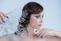 Νέα γυναίκα στη δημιουργική ασημένια καλλιτεχνική σύνθεση Η βασίλισσα πάγου νεράιδων κομψή θέτει, ασημώνει και άσπροι κλάδοι, μαγ στοκ εικόνα