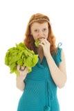 Νέα γυναίκα στη διατροφή στοκ φωτογραφία με δικαίωμα ελεύθερης χρήσης