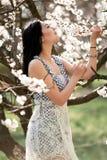 Νέα γυναίκα στον ανθίζοντας κήπο βερίκοκων Στοκ εικόνα με δικαίωμα ελεύθερης χρήσης