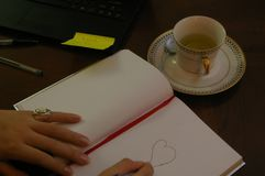 Νέα γυναίκα στο γραφείο του που επισύρει την προσοχή ένα δάπεδο τζακιού σε ένα βιβλίο στοκ φωτογραφίες με δικαίωμα ελεύθερης χρήσης