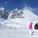 Νέα γυναίκα στο ρόδινο σακάκι σκι, γάντια, καπέλο που εξετάζει το τοπ ο στοκ εικόνα