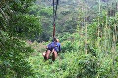 Νέα γυναίκα στο zipline επάνω από τη ζούγκλα Στοκ Εικόνες