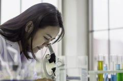 Νέα γυναίκα φαρμακοποιών που εξετάζει μέσω του μικροσκοπίου, που λειτουργεί το εργαστήριο, χημική δοκιμή στο εργαστήριο, έννοια γ στοκ φωτογραφία