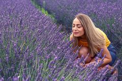Νέα γυναίκα lavender στον τομέα τη θερινή ημέρα Στοκ εικόνες με δικαίωμα ελεύθερης χρήσης