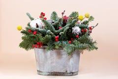 Νέα δέσμη έτους με το έλατο και τα ξηρά λουλούδια στοκ φωτογραφία με δικαίωμα ελεύθερης χρήσης