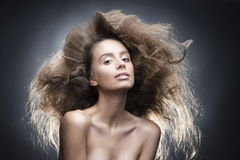 Νέα εμπροσθοφυλακή πορτρέτου ομορφιάς στούντιο γυναικών hairstyle στο γκρίζο BA Στοκ φωτογραφία με δικαίωμα ελεύθερης χρήσης