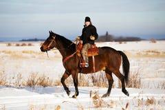 Νέα ενήλικη θηλυκή οδήγηση πλατών αλόγου στοκ εικόνα