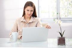 Νέα επιχειρηματίας που εργάζεται στο σπίτι Στοκ Εικόνες