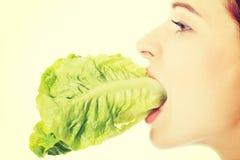 Νέα λεπτή γυναίκα που τρώει το μαρούλι Στοκ φωτογραφία με δικαίωμα ελεύθερης χρήσης