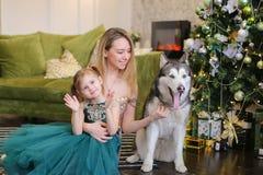 Νέα ευτυχής γυναίκα με λίγη κόρη και malamute να βρεθεί κοντά στο κοντινό χριστουγεννιάτικο δέντρο στοκ εικόνες