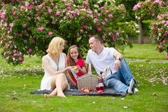 Νέα ευτυχής οικογένεια που έχει το πικ-νίκ υπαίθρια Στοκ φωτογραφία με δικαίωμα ελεύθερης χρήσης