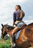 Νέα ελκυστική οδήγηση πλατών αλόγου γυναικών Στοκ φωτογραφία με δικαίωμα ελεύθερης χρήσης