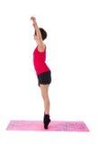 Νέα θηλυκή να κάνει άσκηση Στοκ φωτογραφίες με δικαίωμα ελεύθερης χρήσης